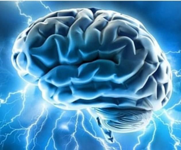 Una nuova ricerca italiana per affinare la mappa del cervello