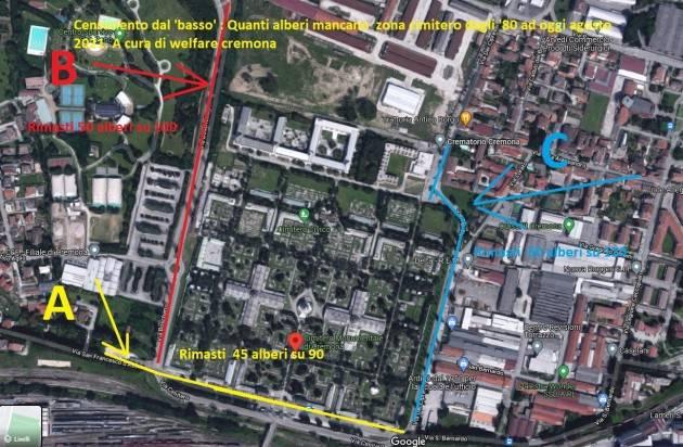 CR Alberi Tagliati  Zona Cimitero ne sono spariti 165   GCStorti
