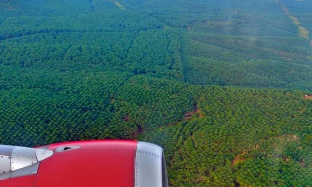 Accaparramento della terra e sfruttamento illimitato delle risorse naturali