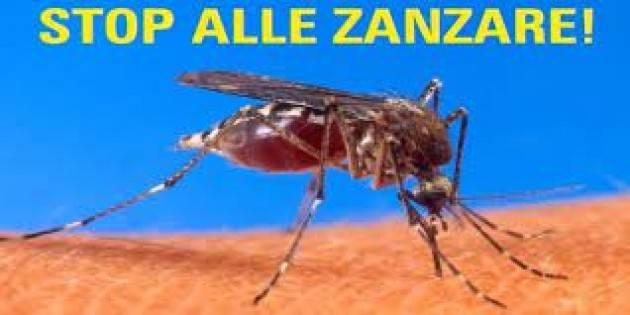 Cremona Proseguono i trattamenti per il contenimento delle zanzare