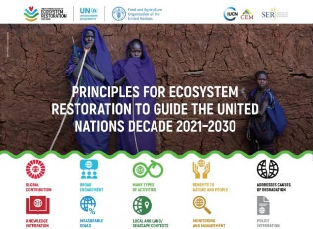 I 10 principi guida per far rivivere la Terra