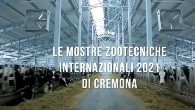Cremona FIERE ZOOTECNICHE, MOSTRA E ASTA BOVINA 26-28 Novembre 2021