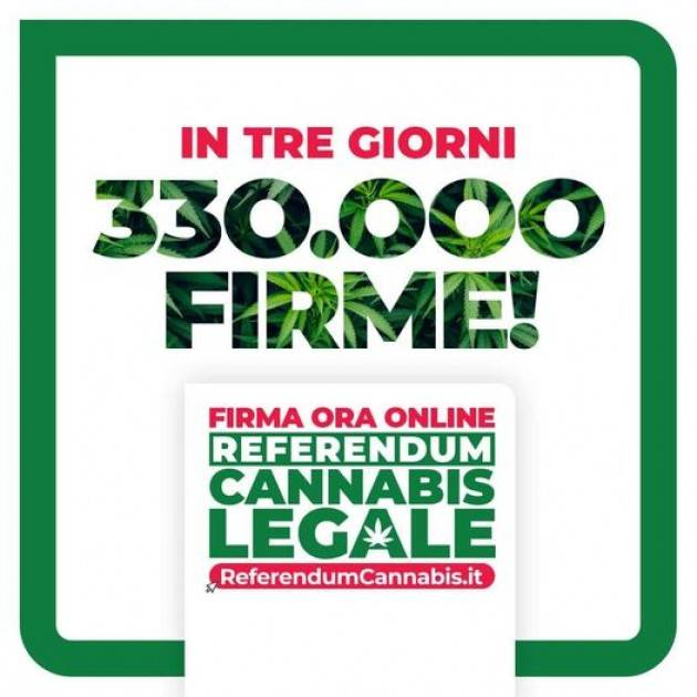 Firma per Referendum Cannabis Legale | Franco Bordo