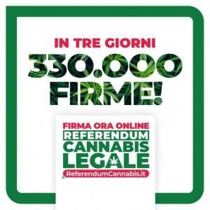 Firma per Referendum Cannabis Legale   Franco Bordo