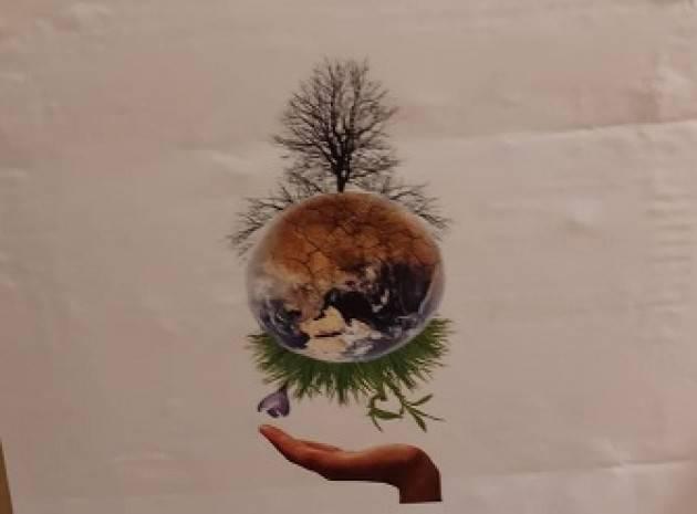 CR Flash Mob  per Stop al taglio di alberi Cesare Vacchelli :in città mancano 45mila piante