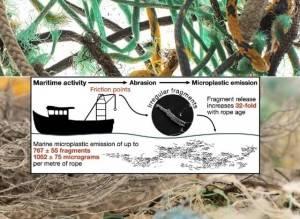 Corde e reti da pesca disperdono miliardi di frammenti di microplastiche in mare ogni anno
