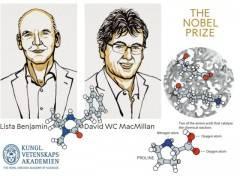 Premio Nobel alla chimica verde: vincono List e MacMillan, costruttori di molecole