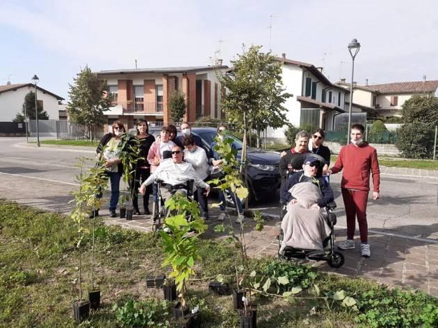 Diego Vairani  A Soresina 200 piante in più Insieme si fanno sempre grandi cose...
