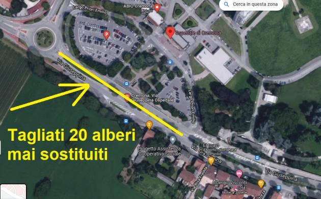 CR Alberi Tagliati  20 piante mai sostituite davanti HOSP (-627 tot.in città)