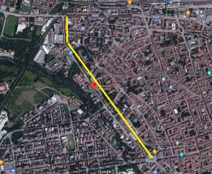 (CR) Via Massarotti n.80 alberi tagliati mai sostituiti (-737 totale)